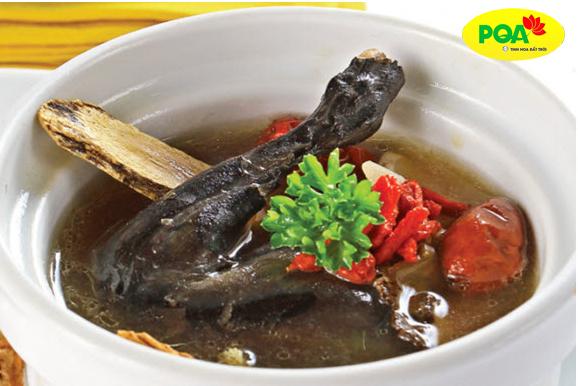 Món ăn Gà hầm hà thủ ô chữa sa tử cung